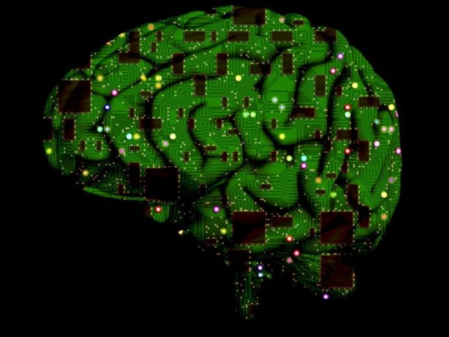 brain-1845944_1920-768x771